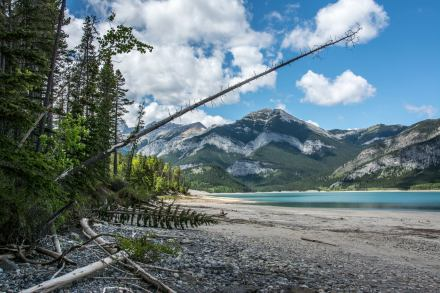 Barrier Lake, Kananaskis